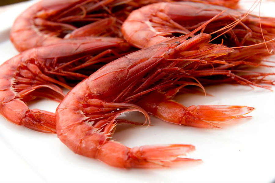 pa surgelati gambero rosso red king